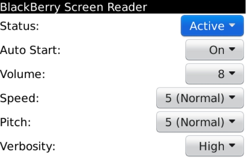 BlackBerry Screen Reader-2